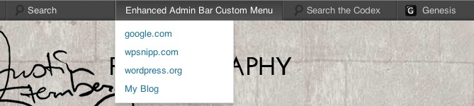 View of Admin Bar with custom menu added.