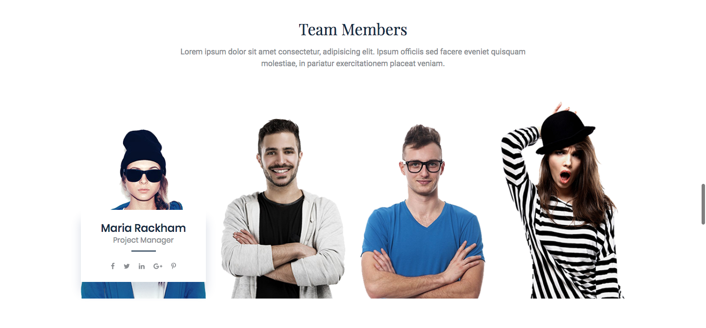 Exclusive Team for Elementor