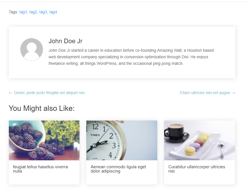 About author, tags, related posts and pagination options.