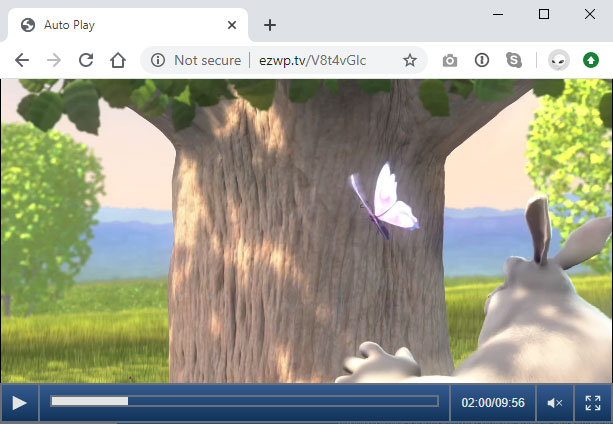 ezwebplayer-wordpress-pro-video-plugin screenshot 2