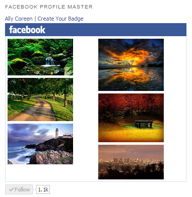 Facebook Profile Master Photo Widget and Buttons Widget