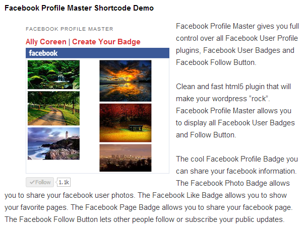 Advanced Shortcode inside pages and posts with shortcode framework