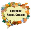 Facebook Social Stream logo