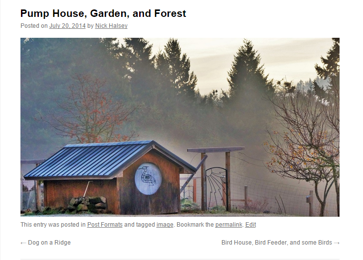 Featured image in an image-format post with only a title and featured, displayed in Twenty Ten (which doesn't support featured images). Without the plugin, only the post title displays.