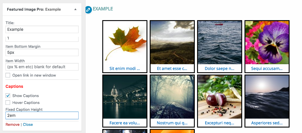 Featured Image Pro Post Grid