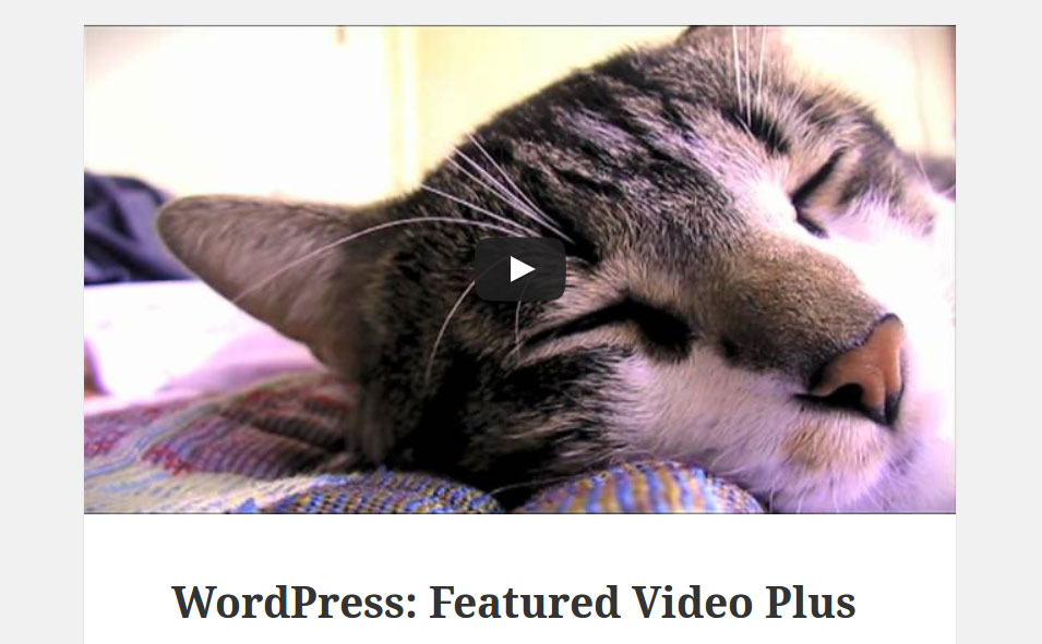 featured-video-plus screenshot 1