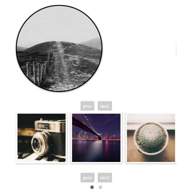 Have multiple types, shapes, sizes and functionalities for multiple galleries on the same page.