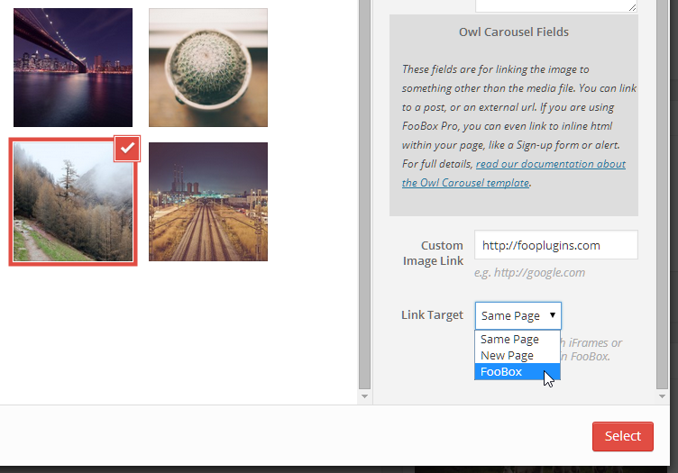 Choose a custom link and target to launch from each image in your Carousel. Combined with FooBox Pro you can launch videos, forms, a Google Map, and more from each individual image in your Carousel.
