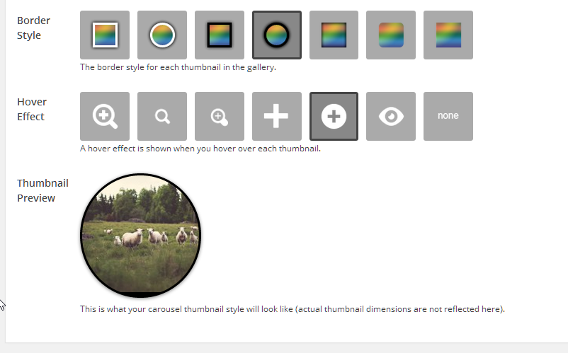 Choose from a plethora of styles and hover effects. See a preview live while you create your gallery.
