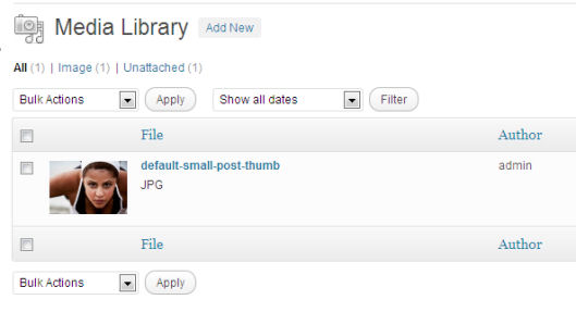 Default WordPress media upload. As you can see, the title needs manual editing.
