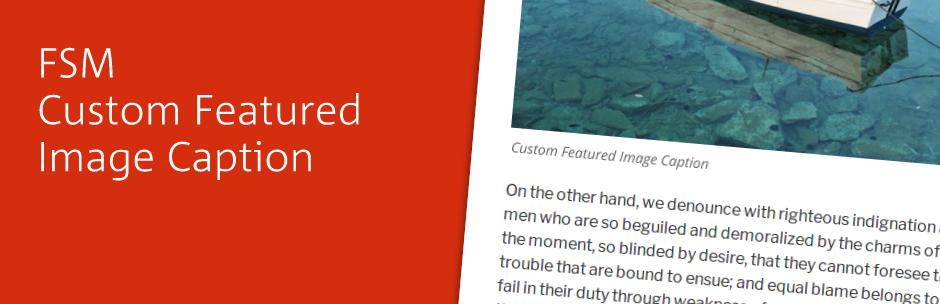 FSM Custom Featured Image Caption