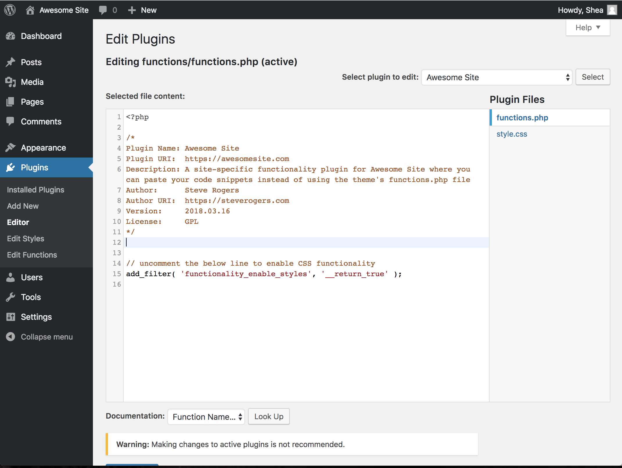 Editing the functionality plugin in the WordPress plugin editor