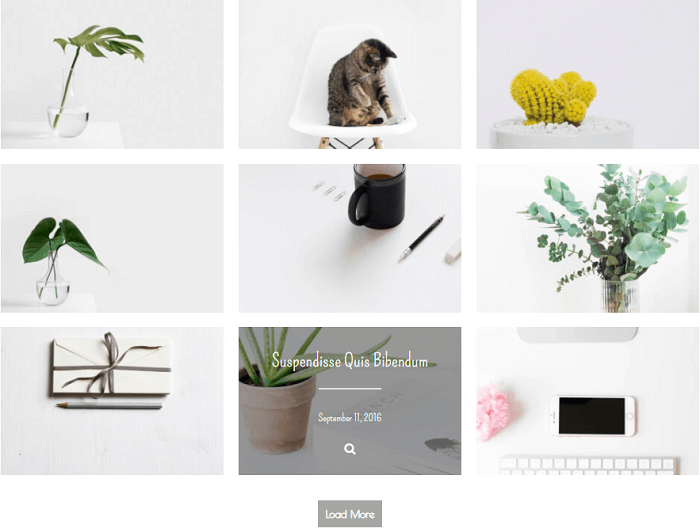 Photo gallery plugin admin area. Image list. Add images, links, tags, keywords, categories, attributes, meta, choose caption effects and other.