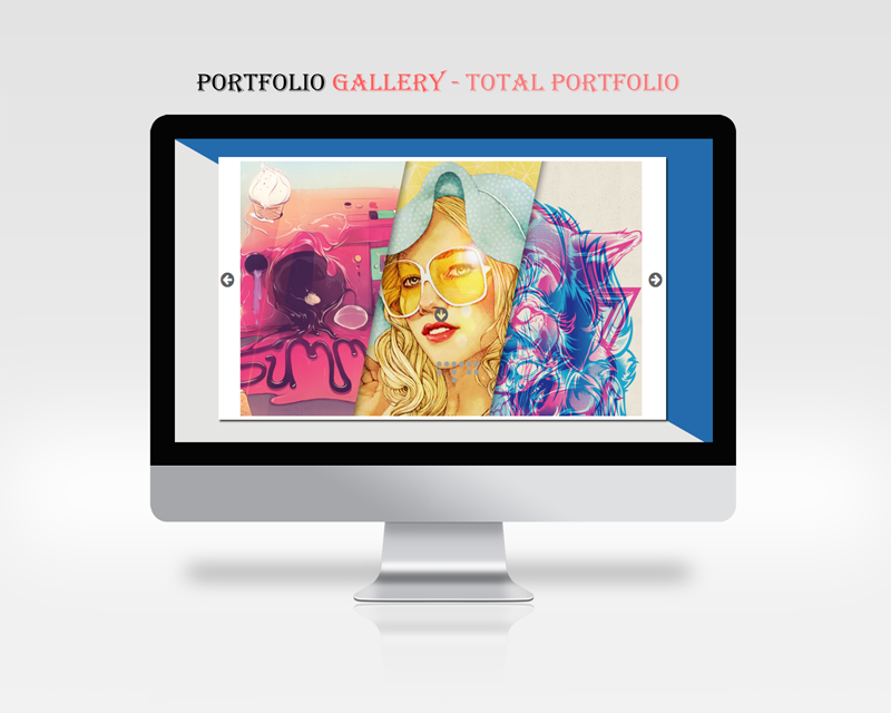 An example of plugin in action (Portfolio Gallery Theme)