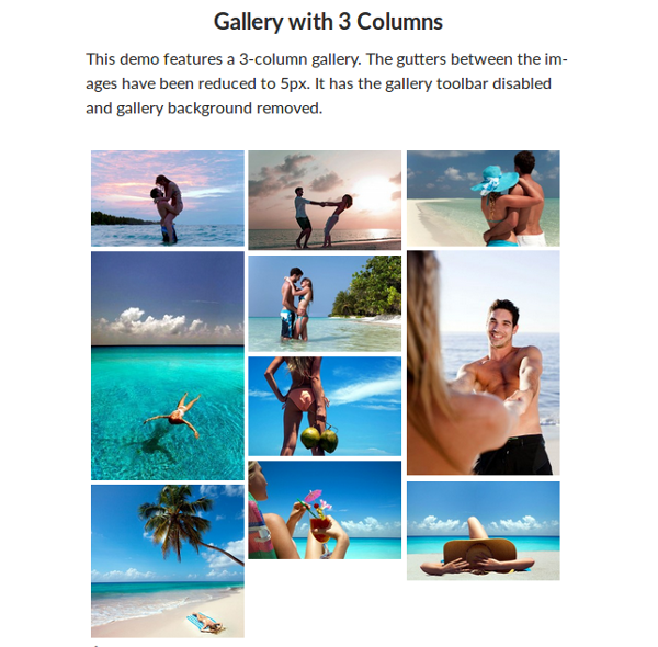 Medium Gallery - 3 Clumns Gallery