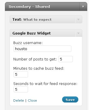 Setting up parameters from widget menu of Google Buzz plugin