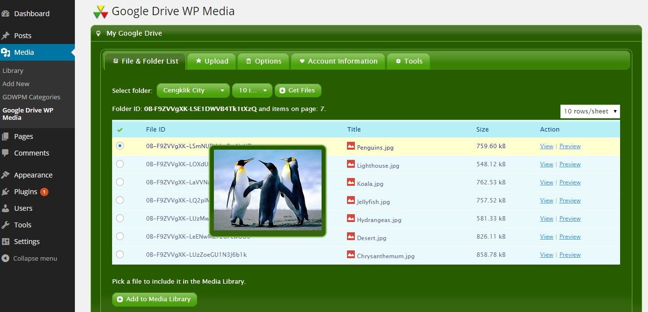 google-drive-wp-media screenshot 4