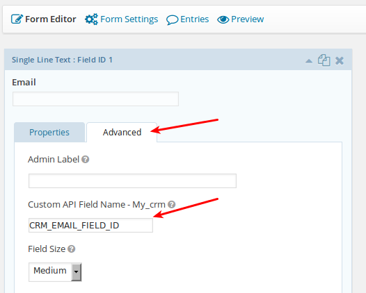 Select which fields to send. Specify the exact field ID needed by the custom API Call.