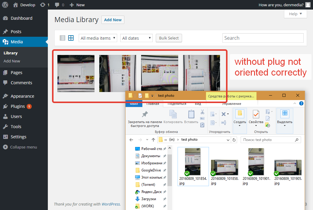 If you already downloaded the pictures that have the wrong orientation, the plugin provides batch processing.