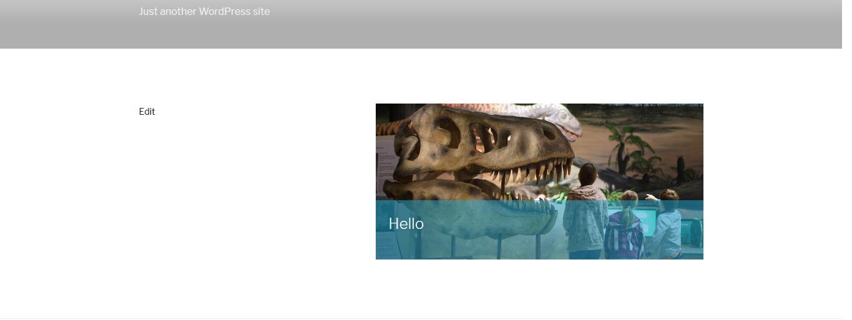 assets/screenshot-2.png