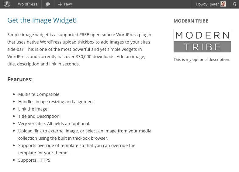 Image Widget on the front of a plain WordPress install.