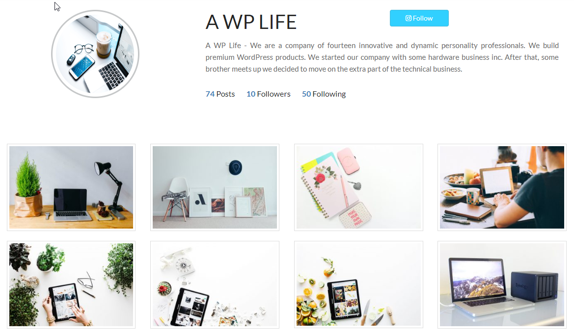 insta style gallery screenshot-3 with 1 column