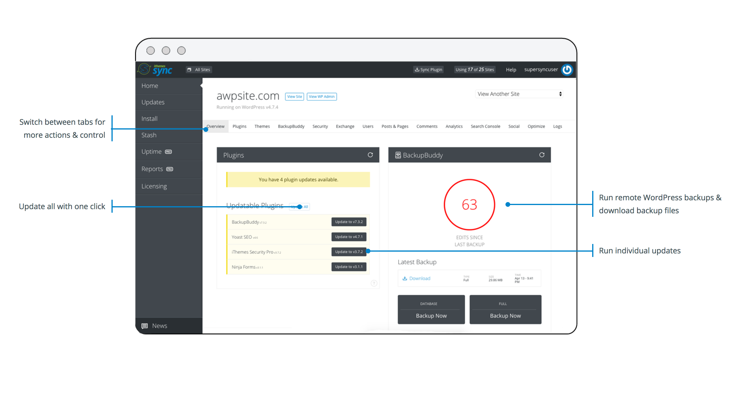 Individual site view with remote WordPress admin actions