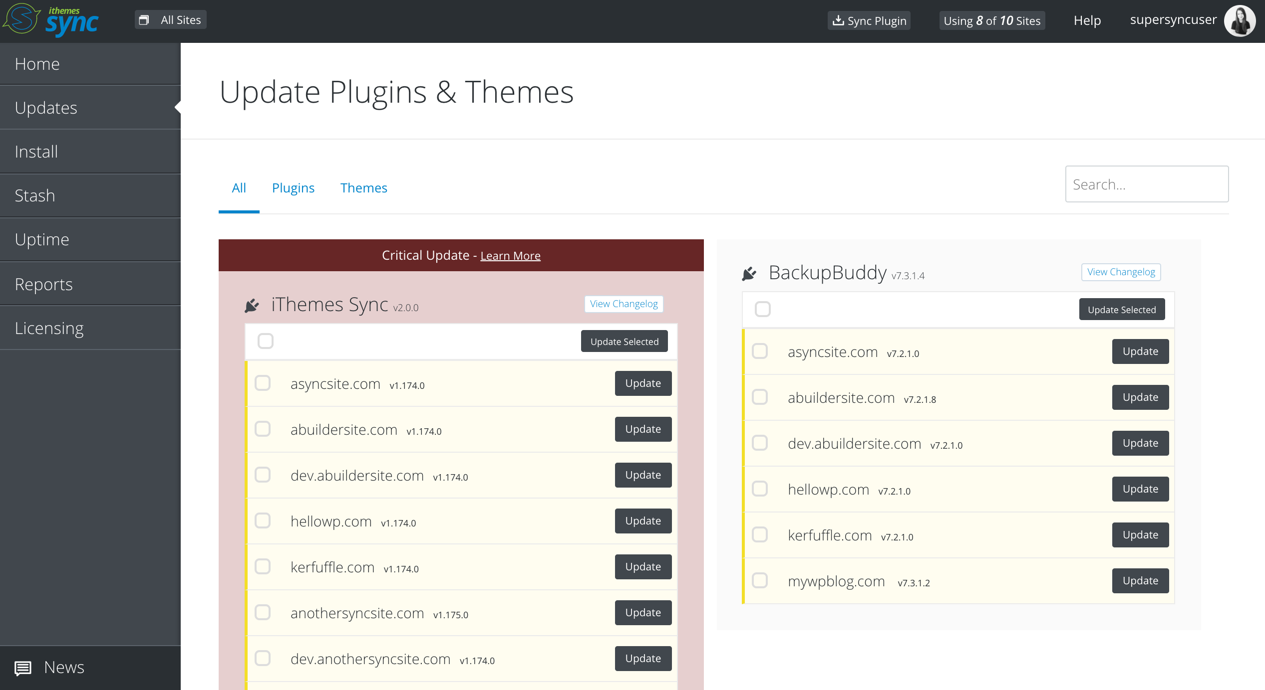 Updates view with listing of themes/plugins and available site updates