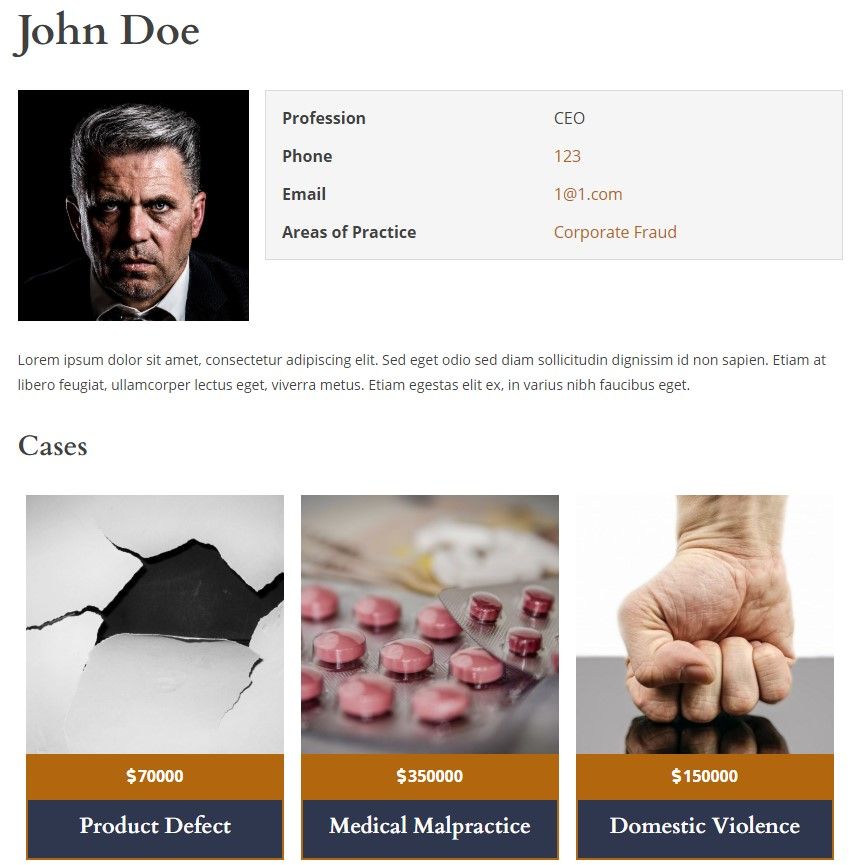 Attorney Single with related cases (LawPress Lite Theme)