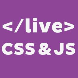 Wordpress Custom CSS Plugin by Ozan canakli