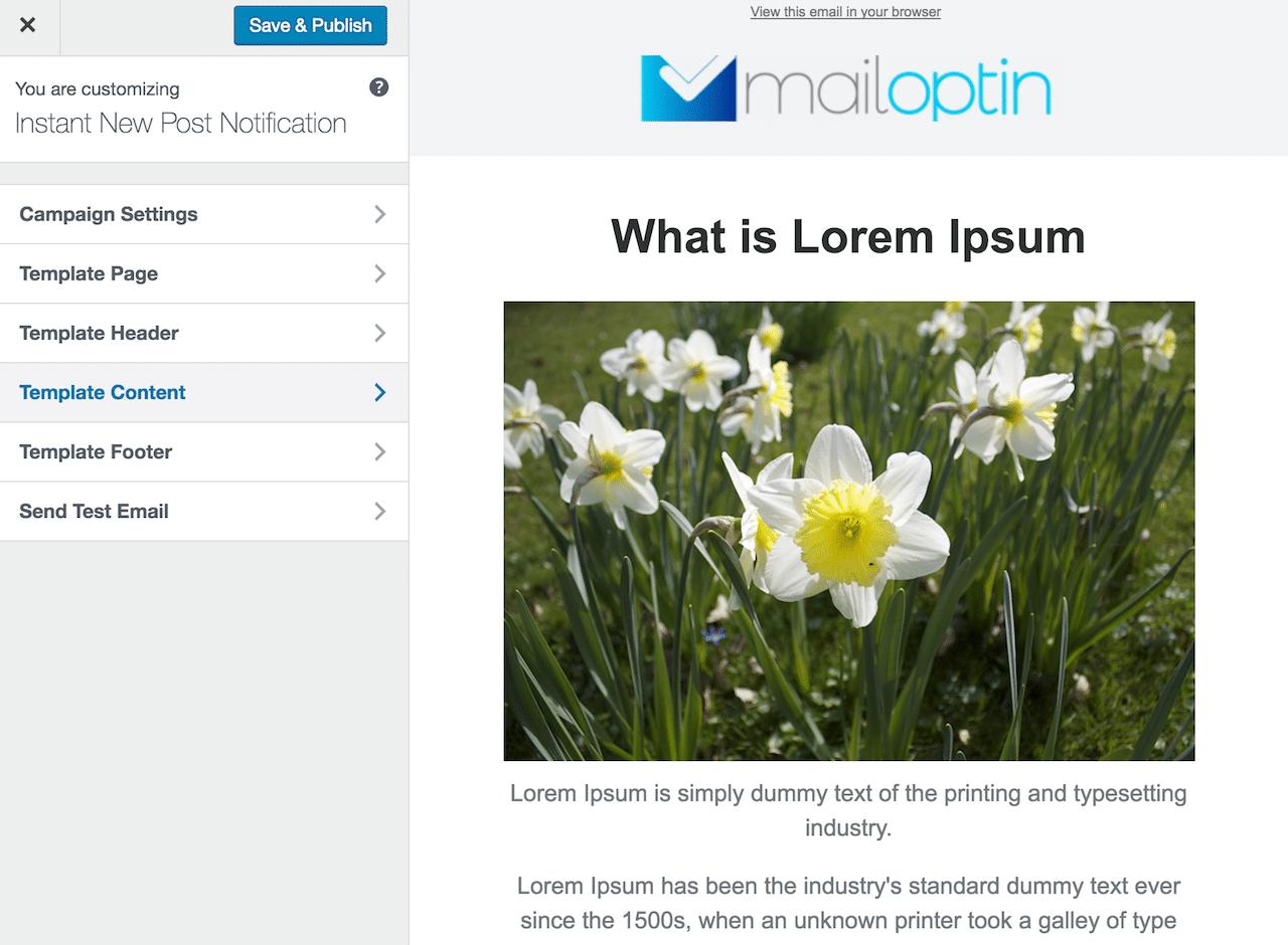 Lightbox/popup optin form