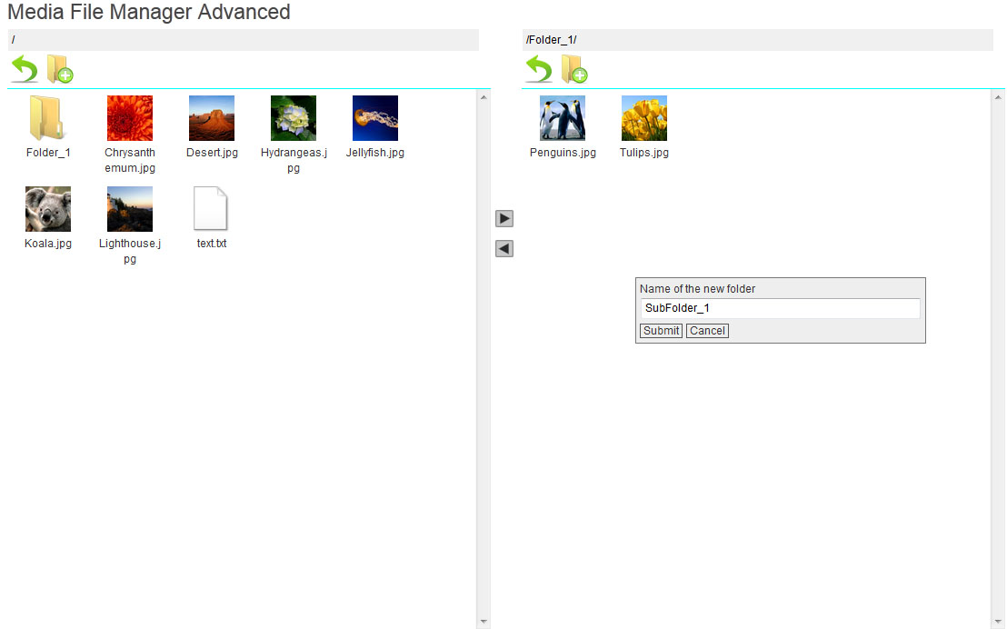 media-file-manager-advanced screenshot 5