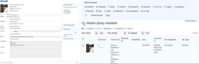 download file from wordpress media library