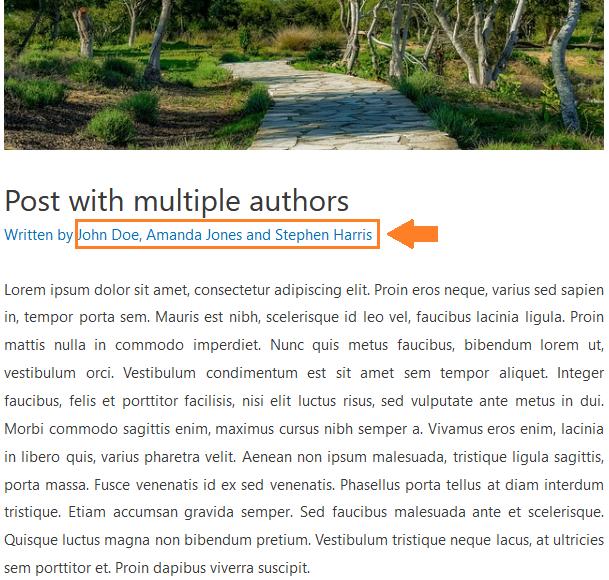 Molongui - Multiple Authors-WordPress plugin