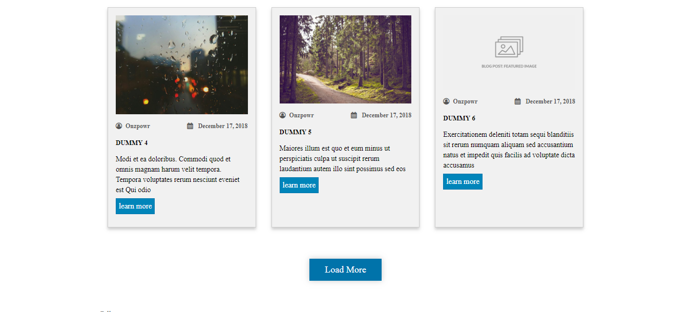 Frontend View of grid and pagination.