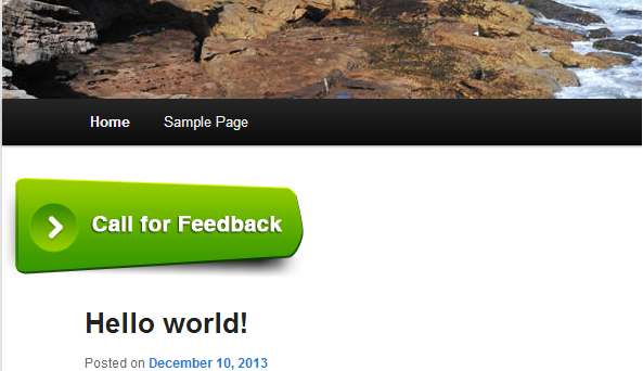 Your customer click the Call for Feedback green button on your site