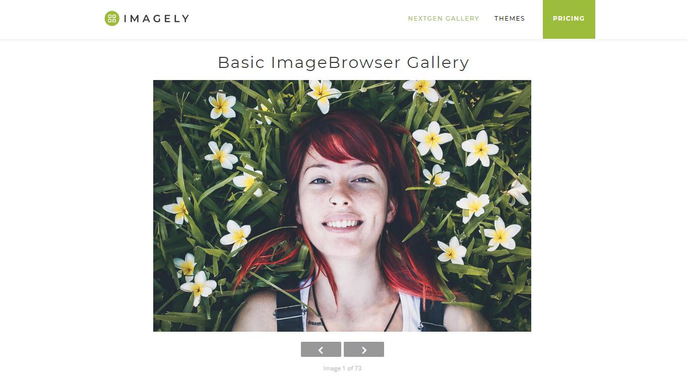 Imagebrowser Gallery