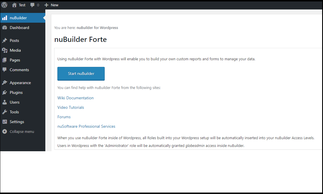 Accessing nuBuilder within Wordpress