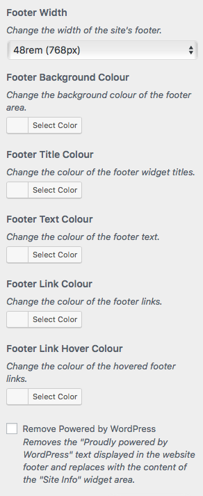 Footer Options