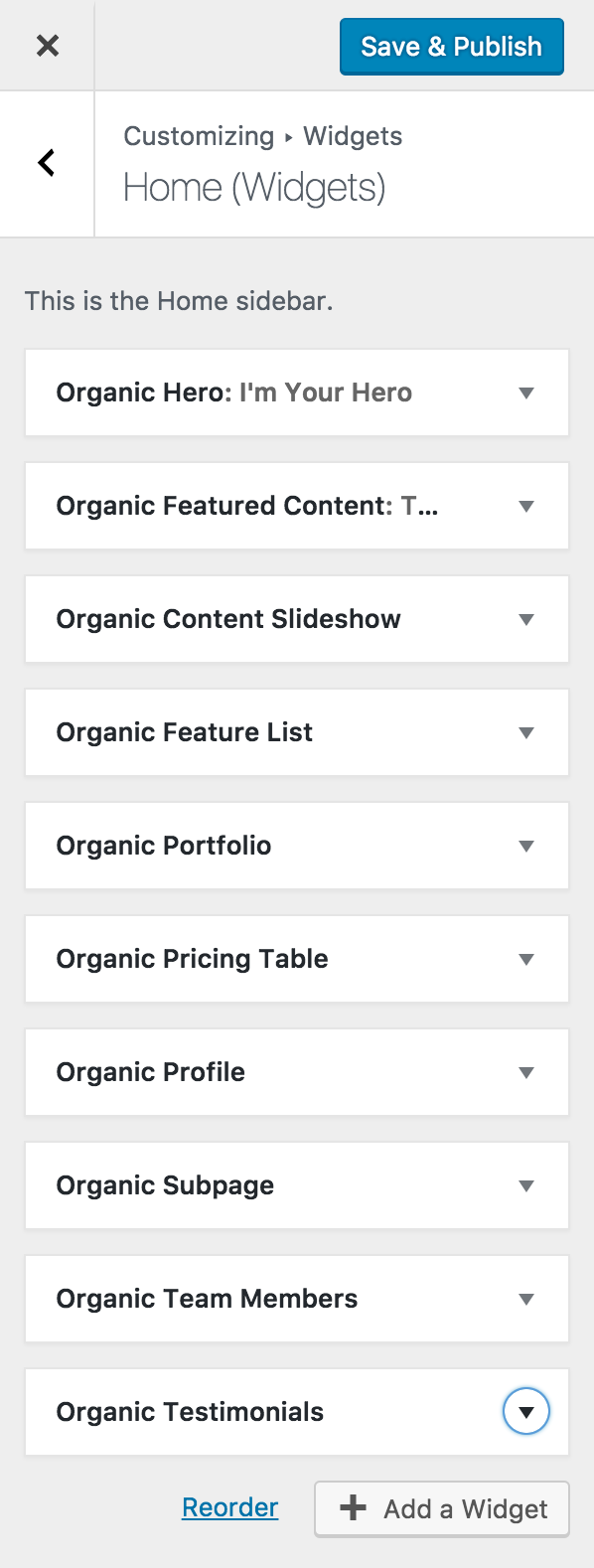 A list of some of the custom widgets included as seen within the customizer.