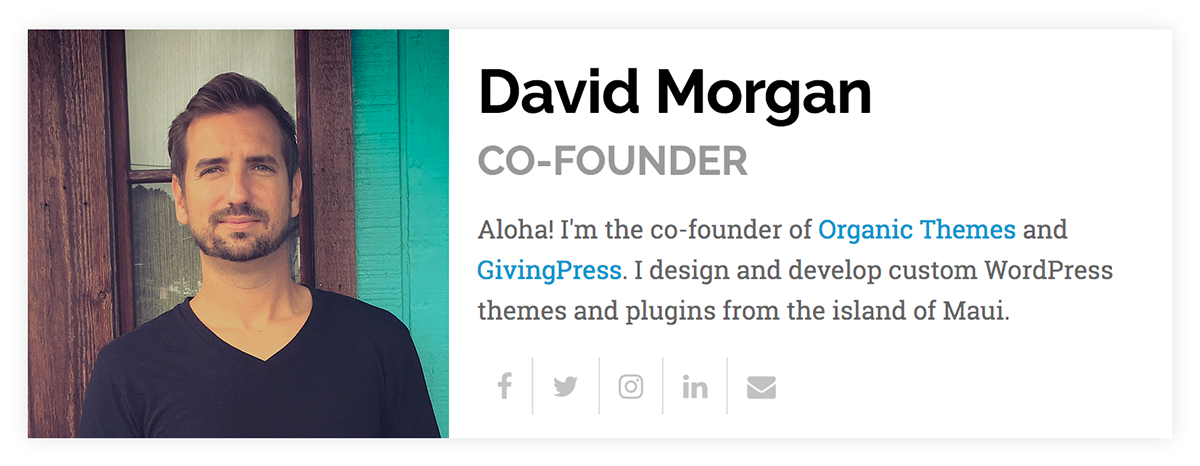The Organic Profile Block on the front-end of the Origin Theme from Organic Themes.