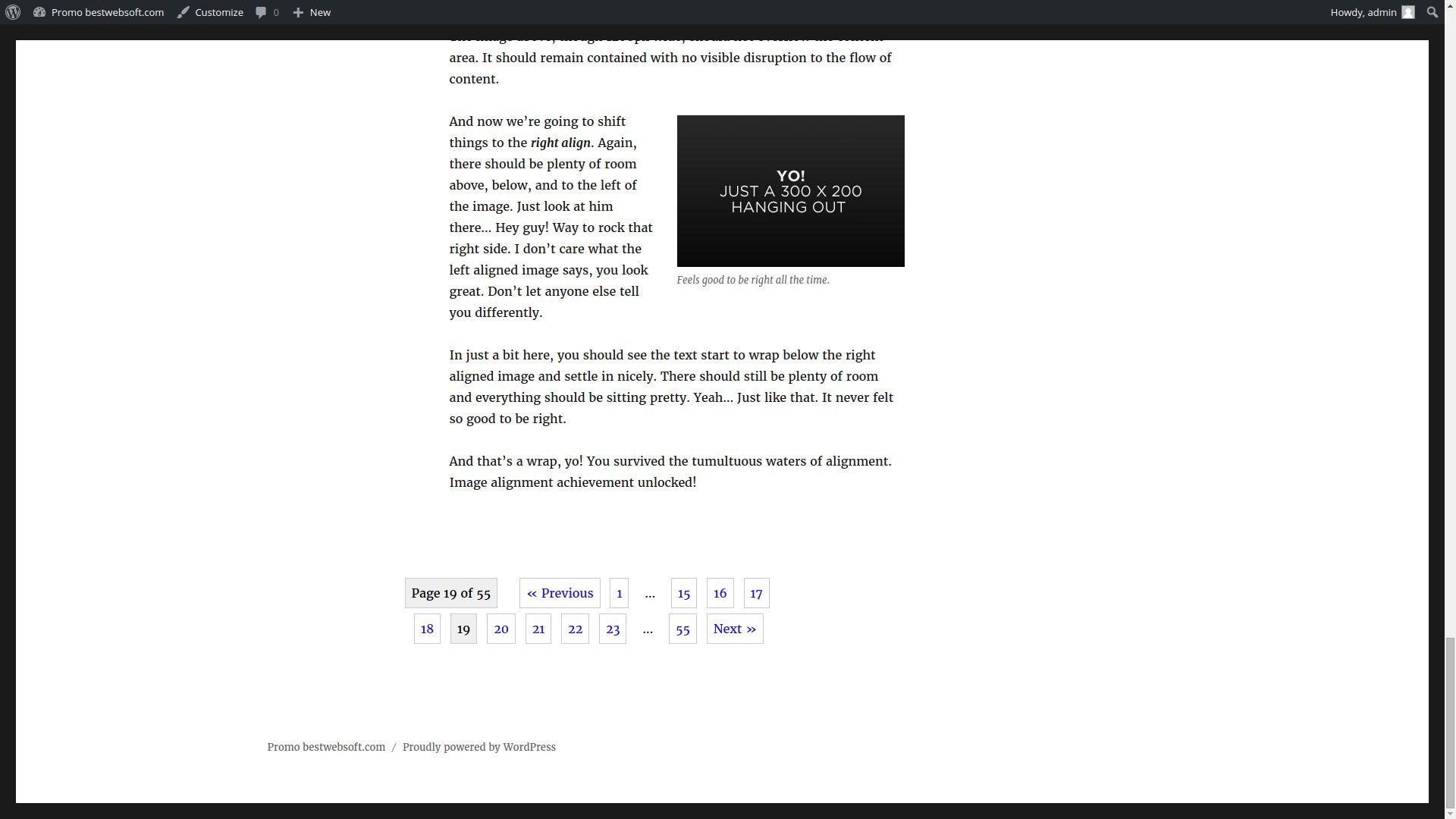 Pagination by BestWebSoft WordPress Plugin