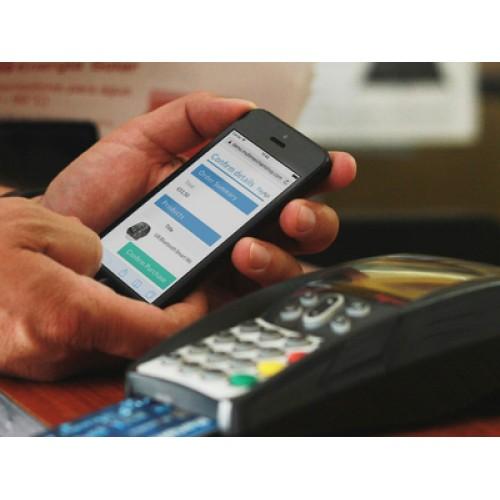 PayApi Online & Mobile Payments