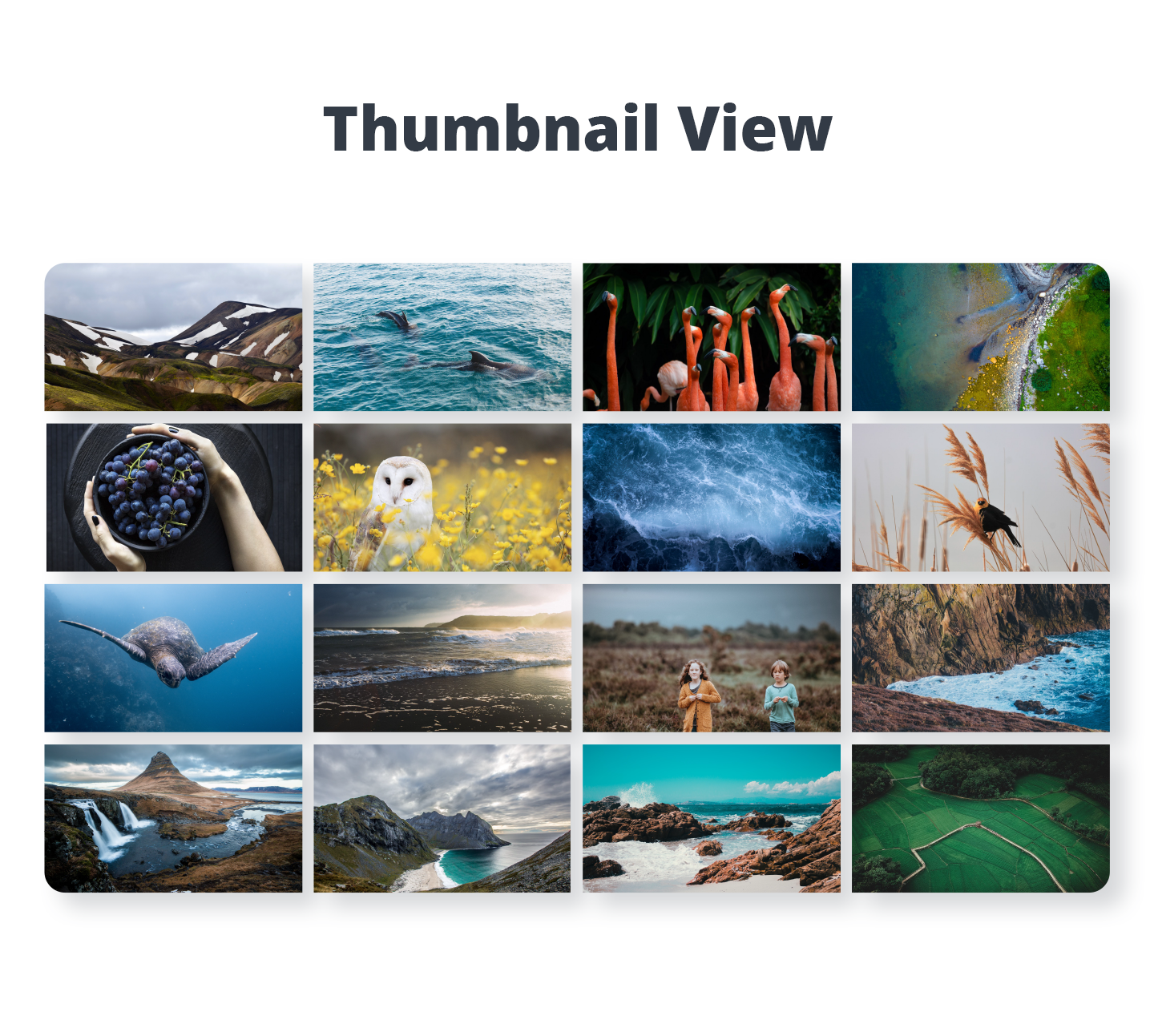 Photo Gallery - Thumbnails View