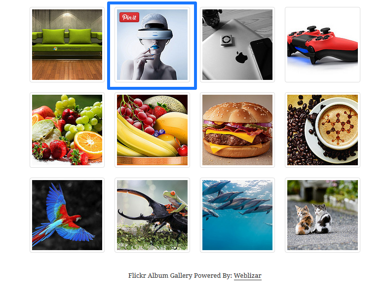 Pinterest Pin It Button On Image Hover With Image Gallery