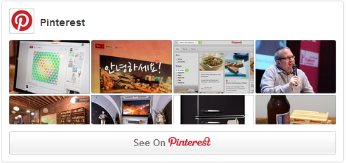 Pinterest Widget Screen Shot