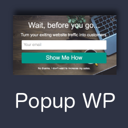 Wordpress Popup Plugin by Activeconvert