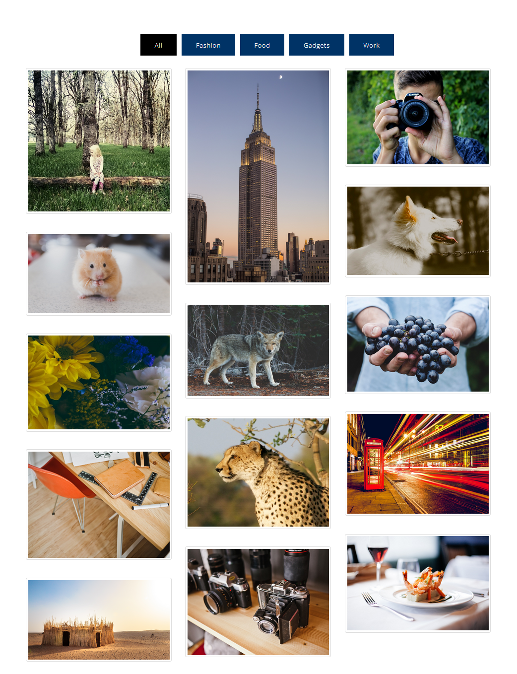 Filter Thumbnails By Portfolio Filters