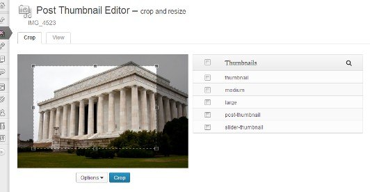 """Crop the image as you see fit, select the thumbnails you wish to change, and click """"Crop""""."""