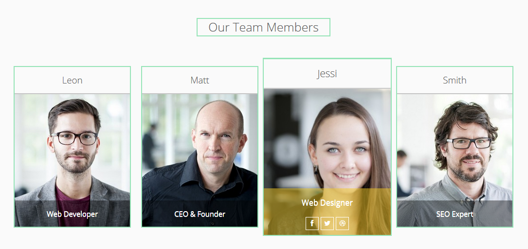 purethemes-team-members screenshot 1